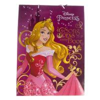 Shopper sacchetto regalo Disney Princess 33 x 45 cm-5902814355916